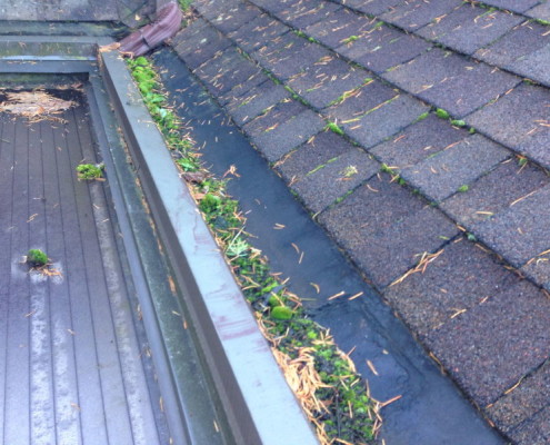 Clogged gutters roofing inspection