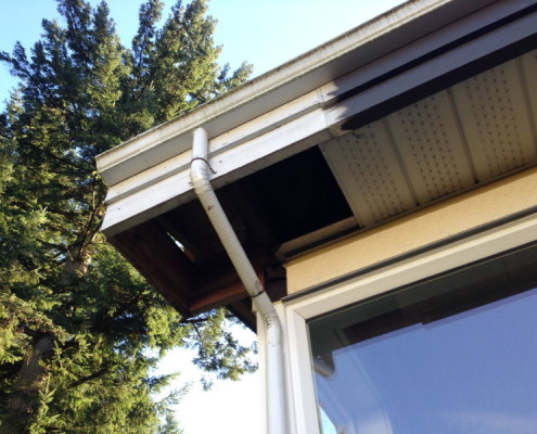 Missing soffits raccoons accessed attic causing major damage