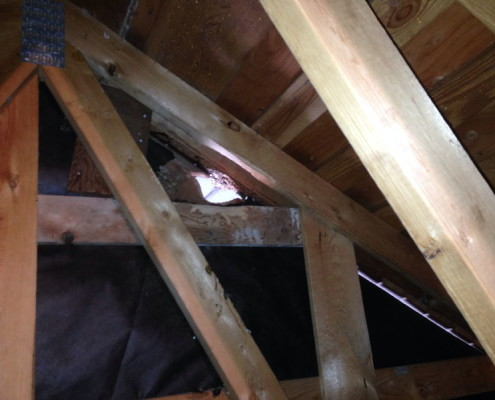 Rodent access into attic areas