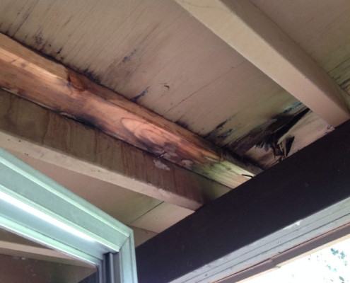 Rotten sheating under decking areas