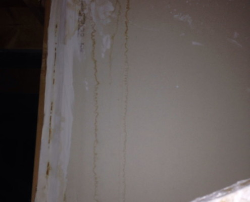 Old damage from roof leak
